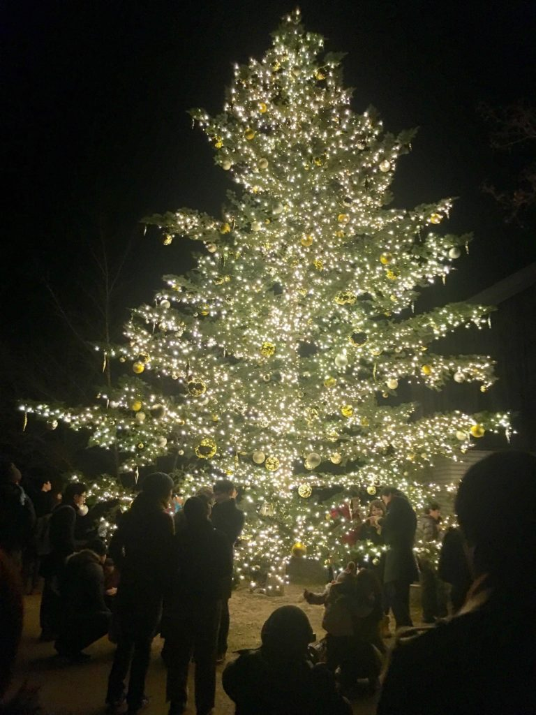 軽井沢 観光 冬
