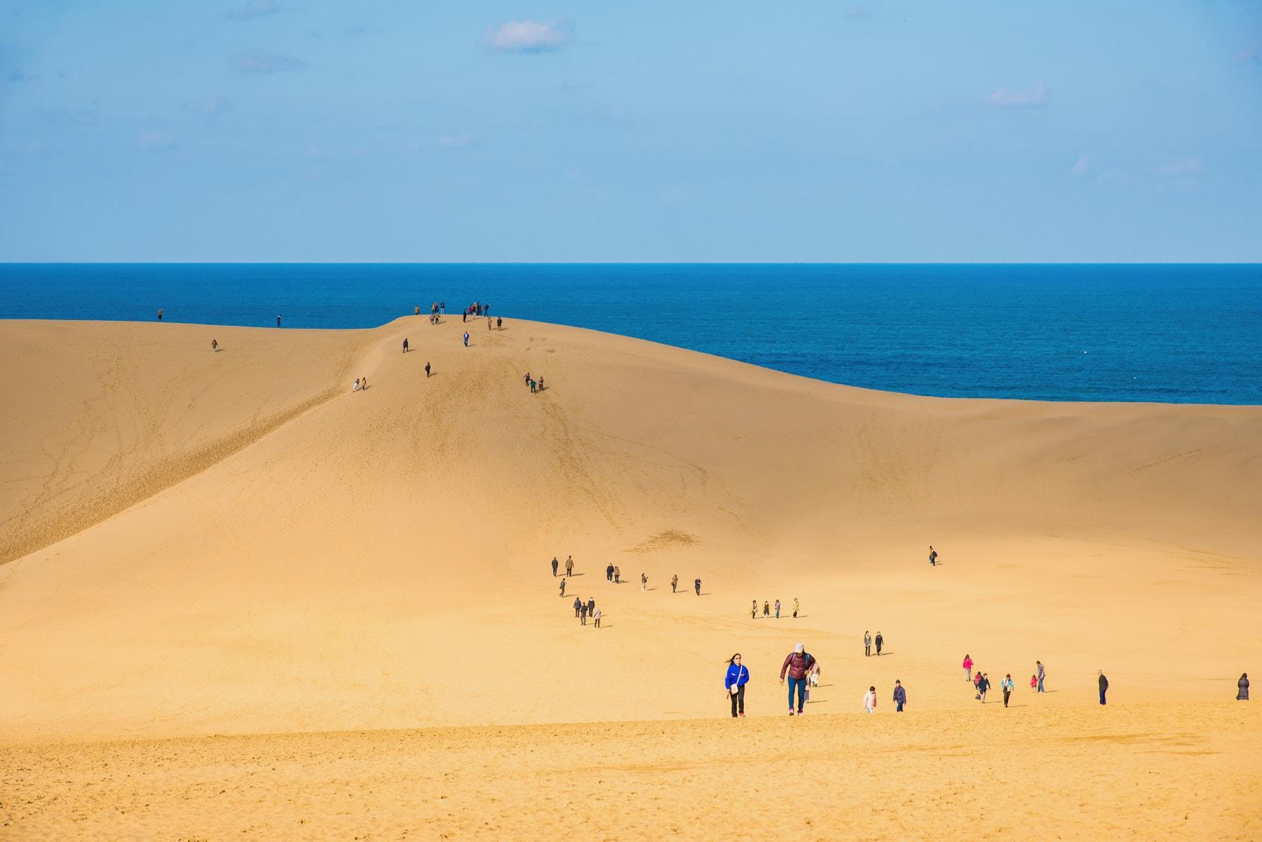 鳥取砂丘で遊ぶなら知っておきた...