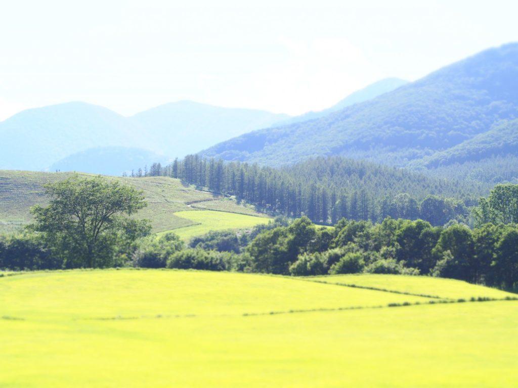 北海道観光スポット