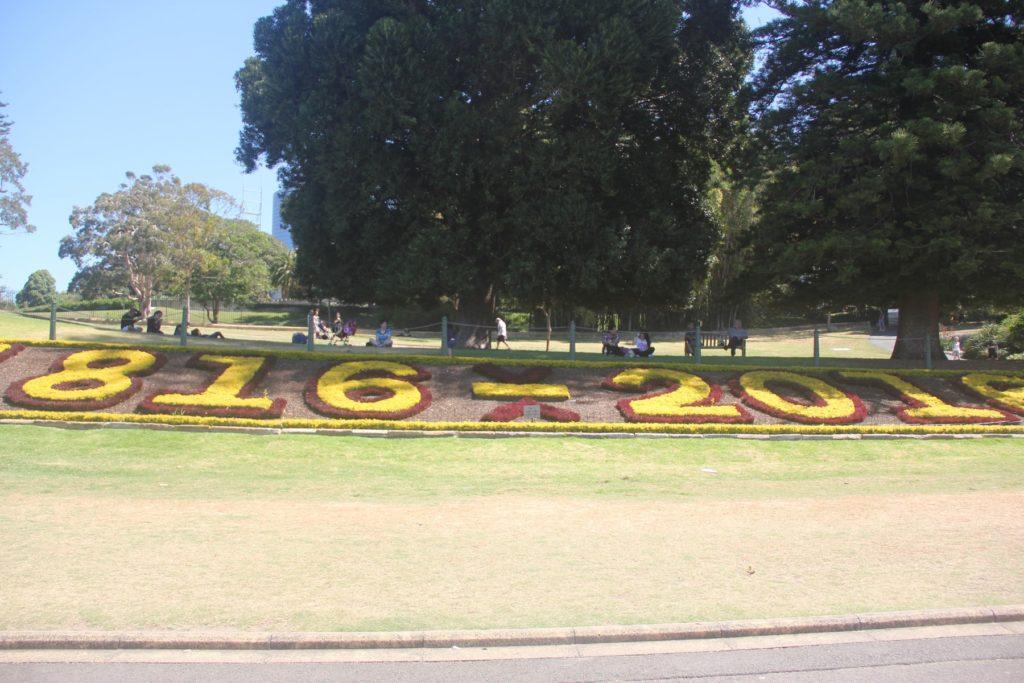 シドニー観光 ロイヤルボタニックガーデン