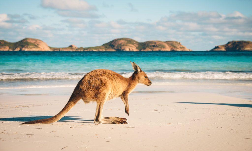 オーストラリア文化