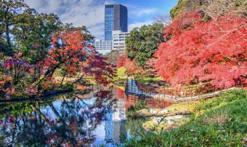 東京 庭園