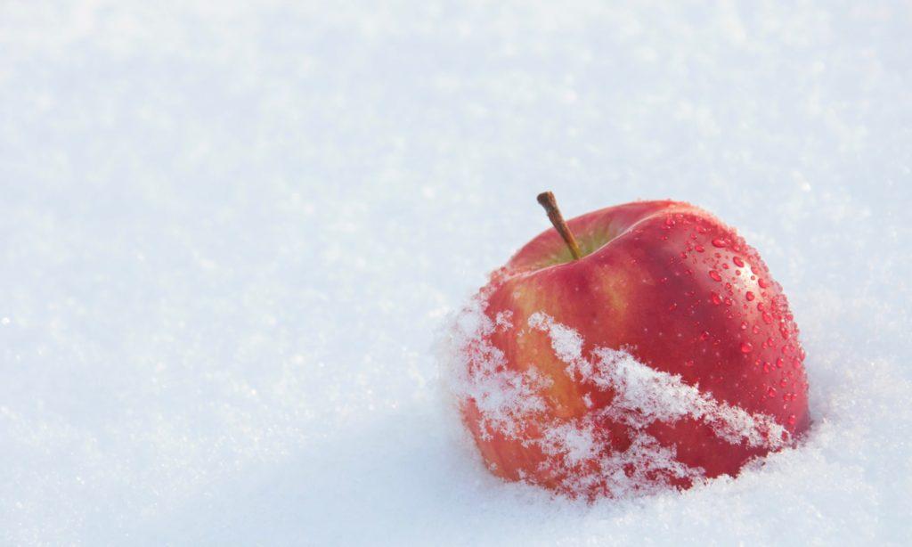 冬といえば 果物