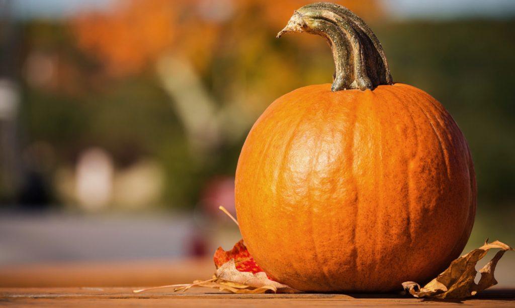 秋の食べ物 かぼちゃ