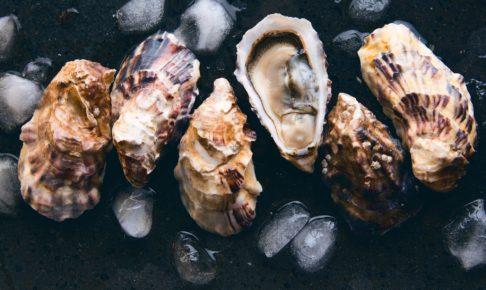 牡蠣 時期
